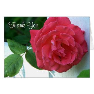 Tarjeta El rosa coralino rosado bonito le agradece cardar