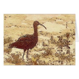 Tarjeta en blanco de Ibis del pantano