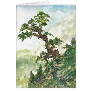 Tarjeta en blanco de pino del paisaje chino del