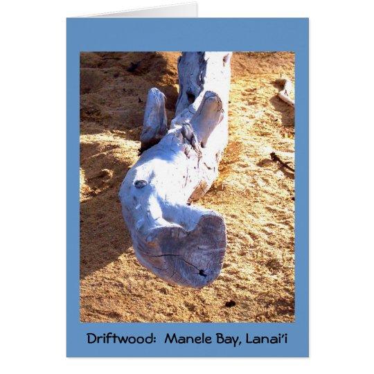 Tarjeta en blanco del Driftwood hawaiano de la