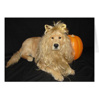 Tarjeta en blanco del león de oro de Halloween