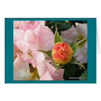 Tarjeta en blanco del nuevo capullo de rosa del