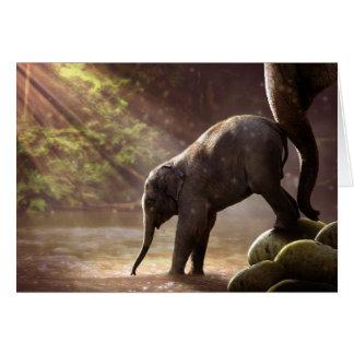 Tarjeta en blanco del primer baño del elefante del