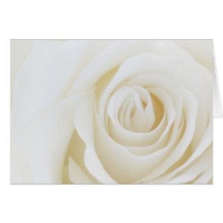 Tarjeta en blanco del rosa blanco