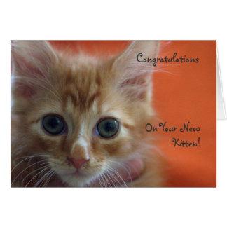 Tarjeta Enhorabuena en su nuevo gatito