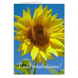 Tarjeta ¡Enhorabuena! - Girasoles de la primavera