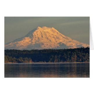Tarjeta Entrada del Monte Rainier y del caso en la