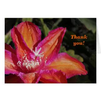 Tarjeta Epiphyllum le agradece cardar