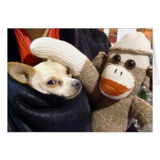 Tarjeta Ernie el mono y la chihuahua del calcetín carda