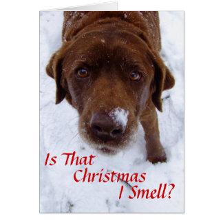 Tarjeta ¿Es ese el navidad I olor?