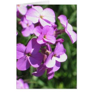 Tarjeta Espacio en blanco púrpura de los Wildflowers