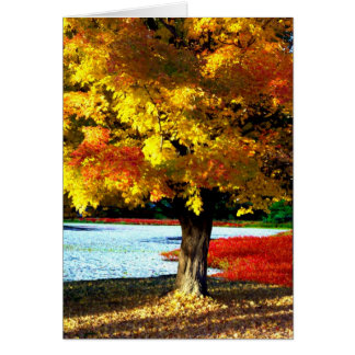 Tarjeta Esplendor del otoño