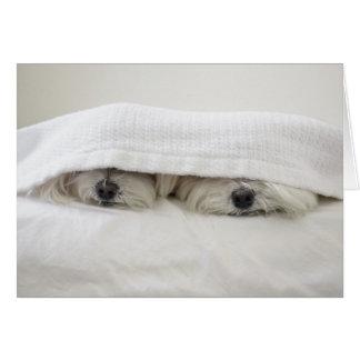 Tarjeta Estancia en cama