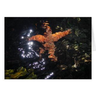Tarjeta Estrellas de mar en Tidepool