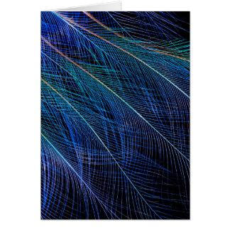Tarjeta Extracto azul de la pluma de ave del paraíso