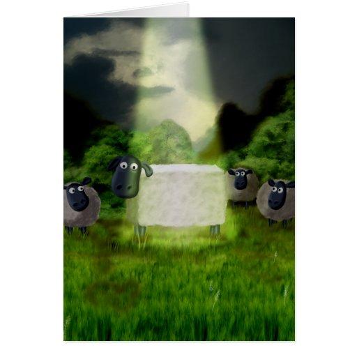 Tarjeta extranjera del experimento de las ovejas