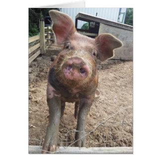 tarjeta fangosa divertida linda del cerdo