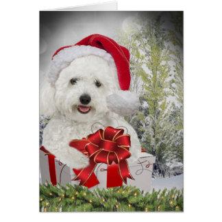 Tarjeta Felices Navidad de Bichon Frise