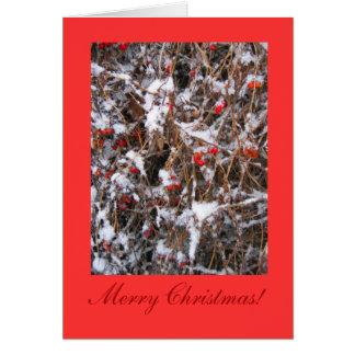 Tarjeta Felices Navidad de la baya
