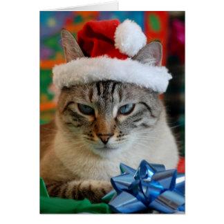 Tarjeta Felices Navidad (incluso si usted es travieso)
