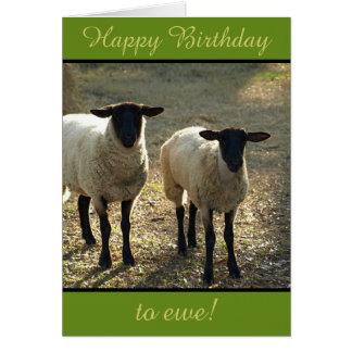 Tarjeta ¡Feliz cumpleaños a la oveja de la multitud!