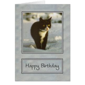 Tarjeta feliz cumpleaños del gatito blanco y negro de la