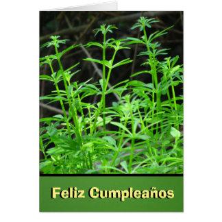 Tarjeta - Feliz Cumpleaños - Flores Blancas Tarjeta De Felicitación