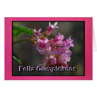 Tarjeta - Feliz Cumpleaños - Flores de color Rosa