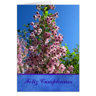 Tarjeta - Feliz Cumpleaños - Flores Rosas