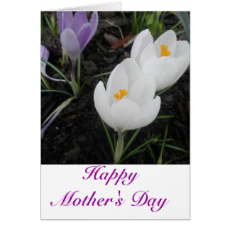 Tarjeta feliz del día de madre (de la familia)