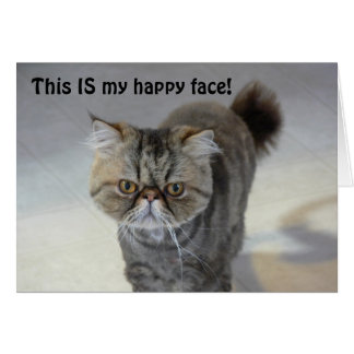 Tarjeta feliz del gato de la cara