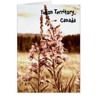 Tarjeta Fireweed de la sepia; Territorio del Yukón, Canadá