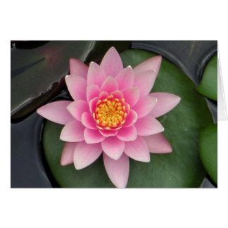 Tarjeta Flor #1 de Lotus