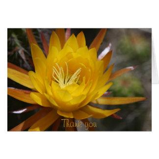 Tarjeta Flor amarilla del cactus