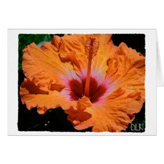 Tarjeta Flor anaranjada brillante del hibisco/arte floral