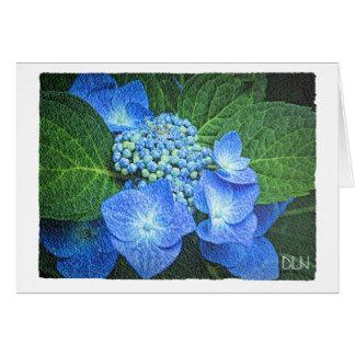 Tarjeta Flor azul del Hydrangea/mirada floral de