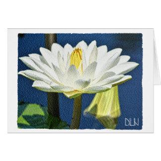 Tarjeta Flor blanca de Waterlily/arte floral