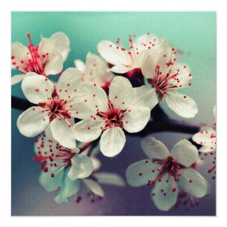 Tarjeta Flor de cerezo rosada, Cherryblossom, Sakura