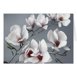 Tarjeta Flor de la magnolia de la primavera, suavemente