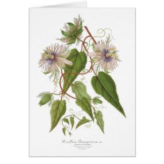 Tarjeta Flor de la pasión