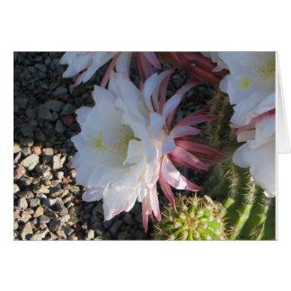 Tarjeta Flor del cactus