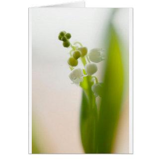 Tarjeta Flor del lirio de los valles
