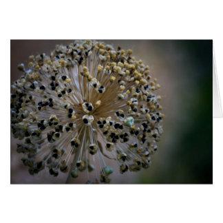 Tarjeta Flor inusual