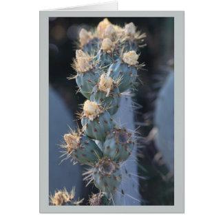 Tarjeta floración del cactus