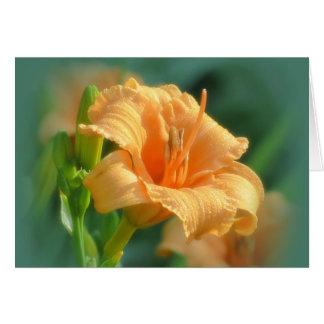 Tarjeta Floraciones de Bertie - Daylily