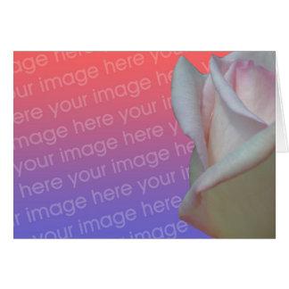 Tarjeta floral de la foto del capullo de rosa rosa
