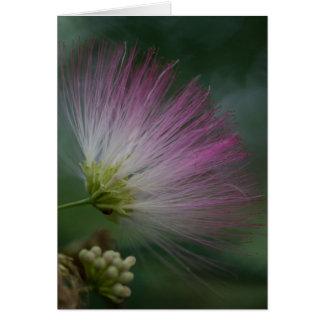 Tarjeta floral del Wildflower del rosa del árbol