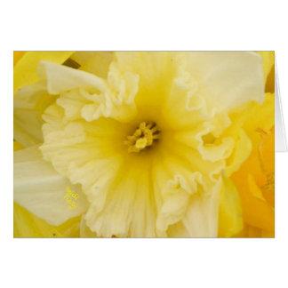 Tarjeta Flores amarillas bonitas del narciso