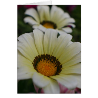 Tarjeta Flores blancas