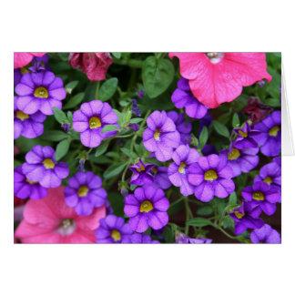 Tarjeta [Flores coloridas] Calibrachoa - cualquier ocasión